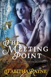 The Meeting Point book cover Tabitha Rayne