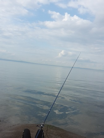 Fishing with Jeremy - a #EuphOff entry (matron...)