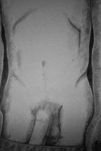 male torso with penis in view - erotic nude - black ink on grey board